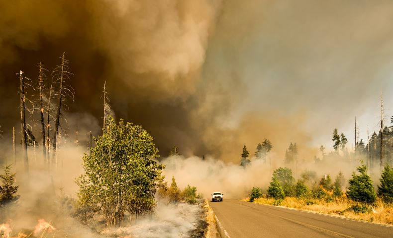 Wildfires contribute to pollution, cut solar power.
