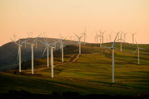 Renewable Energy Surpasses Coal in the United States