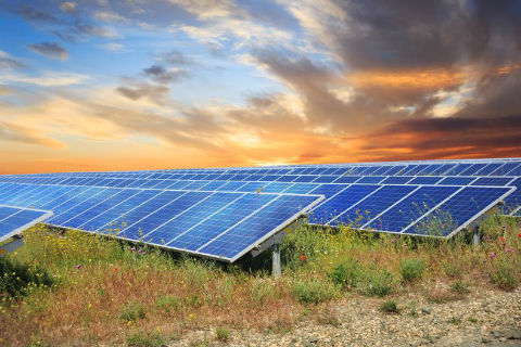 Sunny Days Ahead: Timmonsville to be Site of $20 Million Solar Power Facility